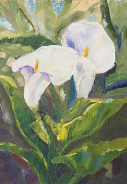 Marion's Floral Art Blog: Calla Lilies Alla Prima oil painting